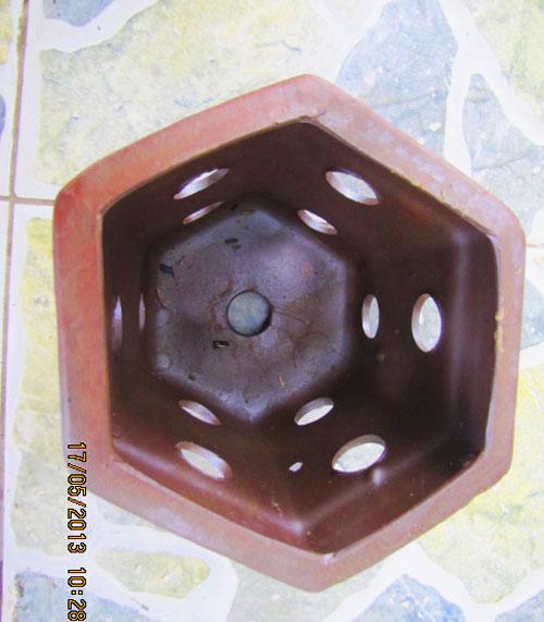 Chậu gốm trồng lan lục giác 14cm x 12cm
