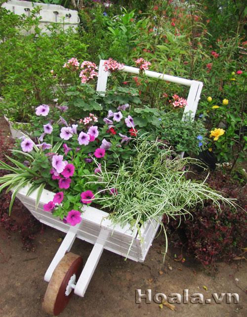 Giá đỡ 56 : Xe hoa một tầng