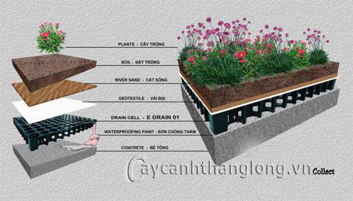 Tấm thoát nước vườn trên mái 1