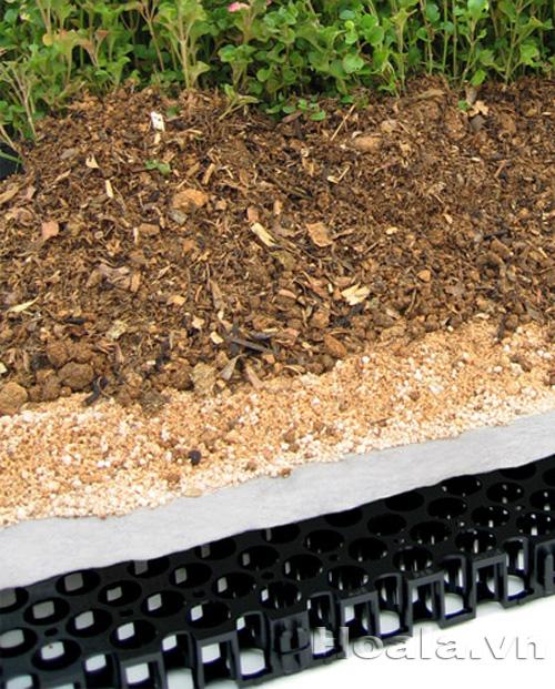 Màng chống thấm trồng cây vườn trên sân thượng Đông Phương Garden