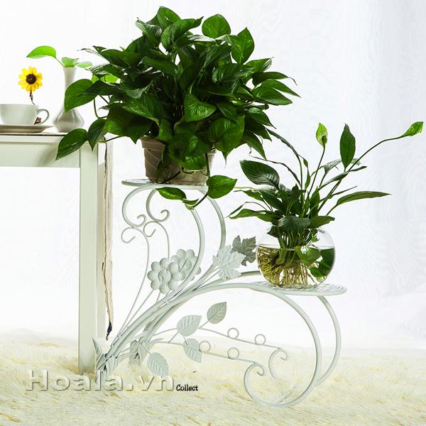 Giá để chậu hoa 124