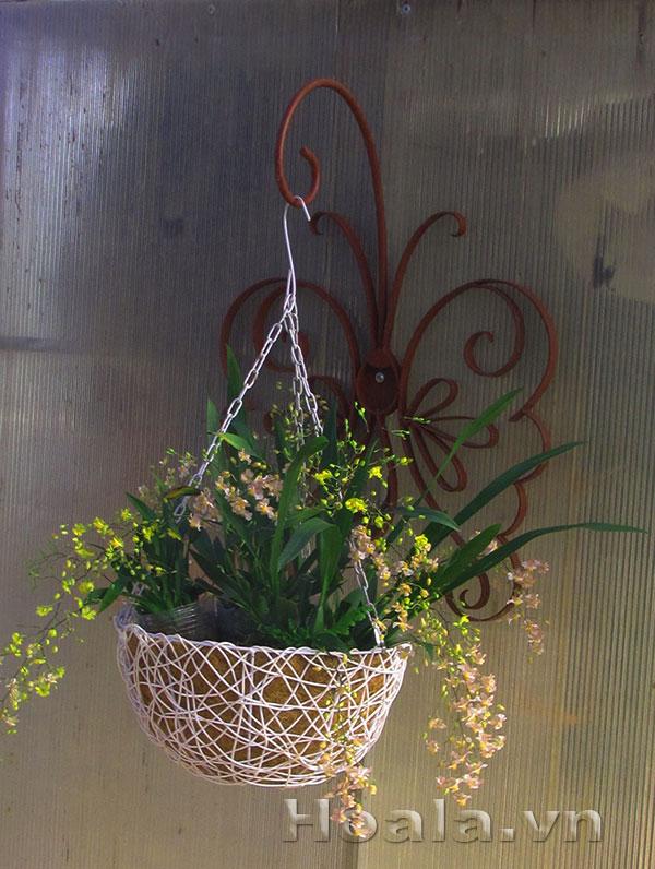 Kệ sắt treo chậu hoa hình bướm