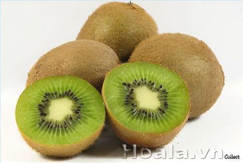 Cây kiwi