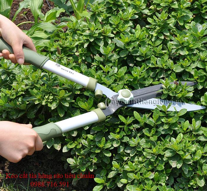 Kéo cắt tỉa hàng rào tiêu chuẩn Wo1107