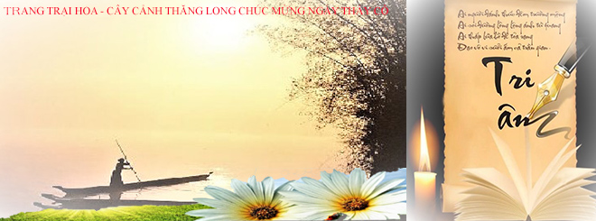 the-banner-chao-mung-20-11