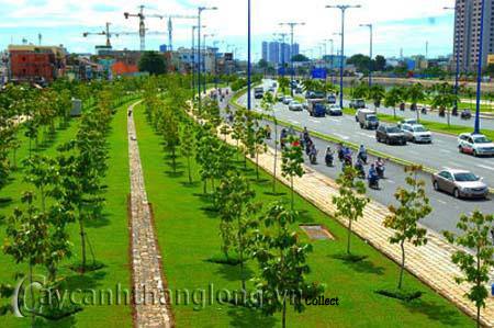Các nguyên tắc định hướng thiết kế cảnh quan đô thị