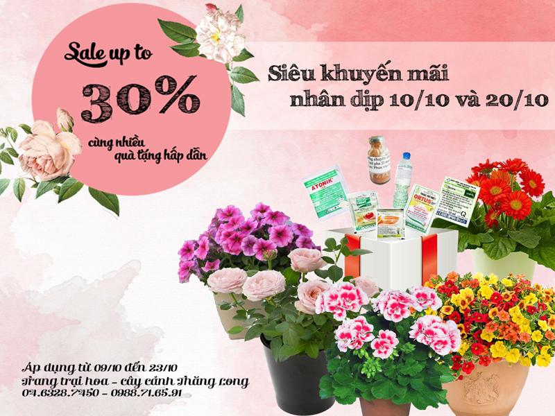 Siêu khuyến mãi chào mừng Quốc tế phụ nữ Việt Nam 20-10