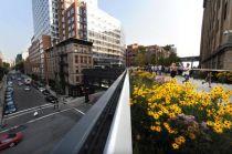 Dạo vườn hoa trên không ở New York