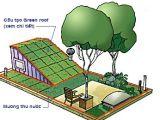 Mái nhà xanh – Green roof: giải pháp thu nước mưa, giảm ngập