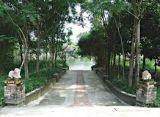 Vườn cổ Việt Nam