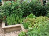 Vườn rau đẹp xinh trên cao với diện tích nhỏ hẹp