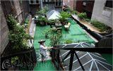Vườn xanh trên các sân thượng ở New York