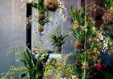 Kiểu vườn tiết kiệm diện tích