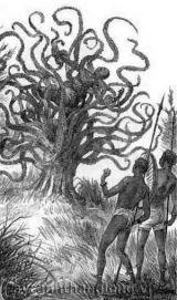 Cây ăn thịt người, từ truyền thuyết đến sự thật