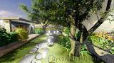 Thiết kế vườn cảnh nghệ thuật nhà Mr Nam