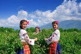 Mỹ phẩm Karlovo thương hiệu số một Bulgaria và nổi tiếng thế giới