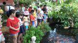 Du lịch, trải nghiệm, khám phá thiên nhiên tại Trang trại hoa cây cảnh Thăng Long