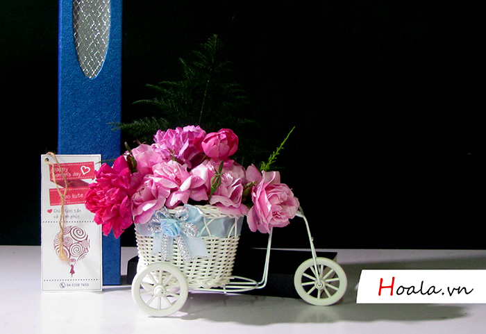 Điện hoa - Hoa hồng ngoại