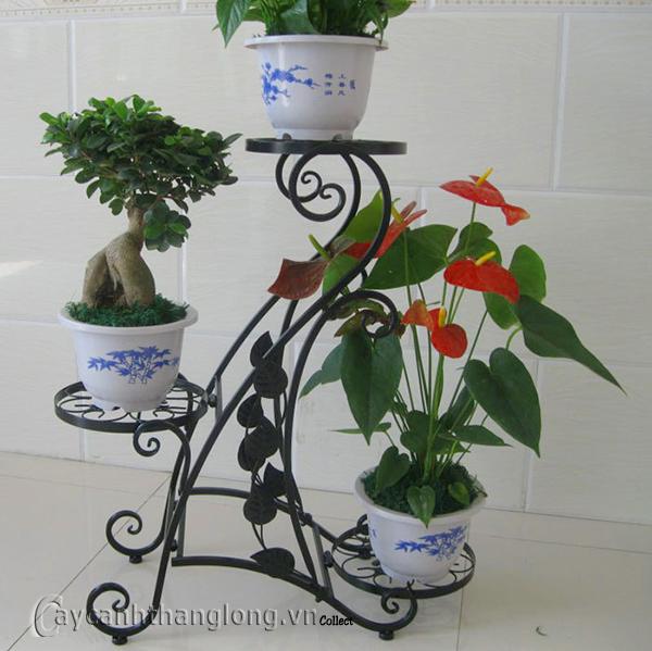 Giá để chậu hoa 174
