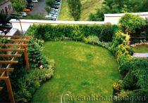 Vườn trên mái 06