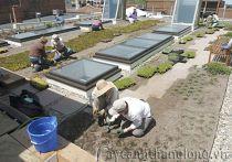 Vườn trên mái 09