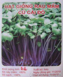 Rau mầm củ cải đỏ