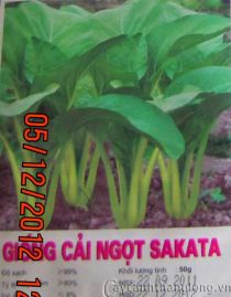 Hạt giống Cải ngọt Sakata