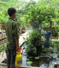 Bình phun_08