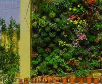 Mẫu Vườn đứng 3