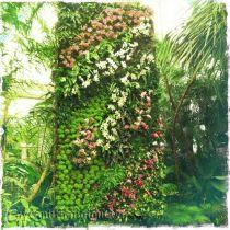 Mẫu Vườn đứng 34
