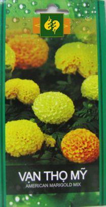 Hạt giống Hoa Cúc Vạn thọ Mỹ