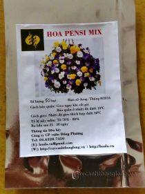 Hạt giống hoa bướm (pensee) mix