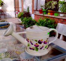 Chậu sứ trồng hoa hình bình tưới