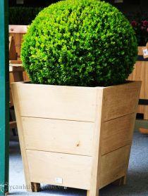 Bồn gỗ trồng hoa cây cảnh 10