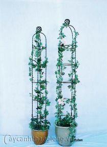 Giá sắt giàn hoa hồng 03