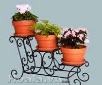 Giá để chậu hoa 172