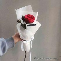 Hoa hồng bó nghệ thuật