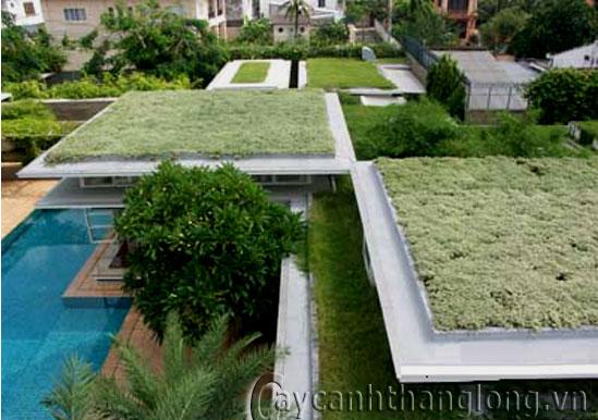 Vườn trên mái 08