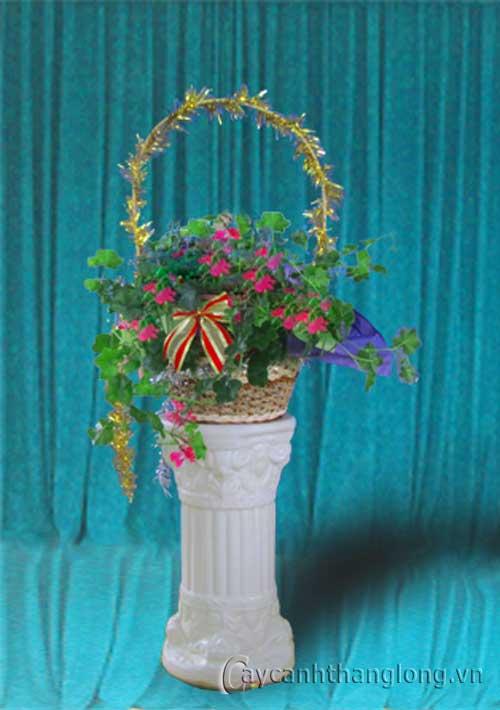 Điện hoa - Phong lữ thảo