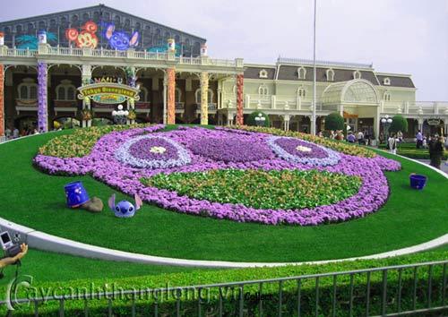 Bồn hoa 4