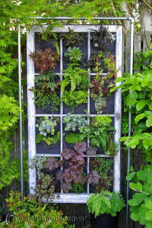 Mẫu Vườn đứng 23