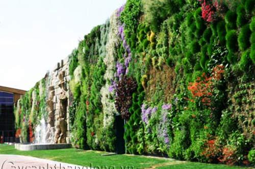 Mẫu Vườn đứng 89
