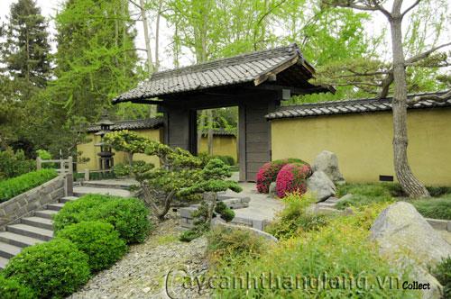 Mẫu vườn Phương Đông 1