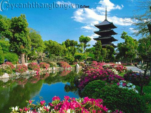 Mẫu vườn Phương Đông 6