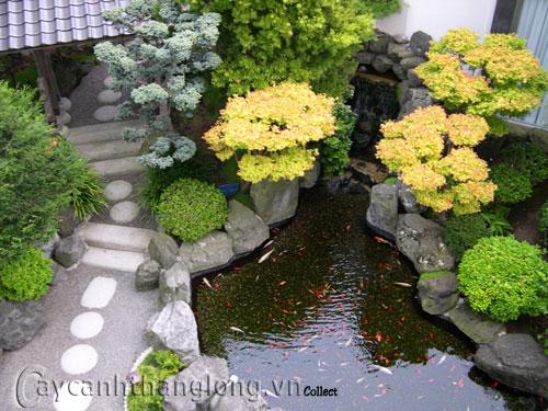 Mẫu vườn Phương Đông 7