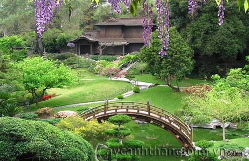 Mẫu vườn Phương Đông 9
