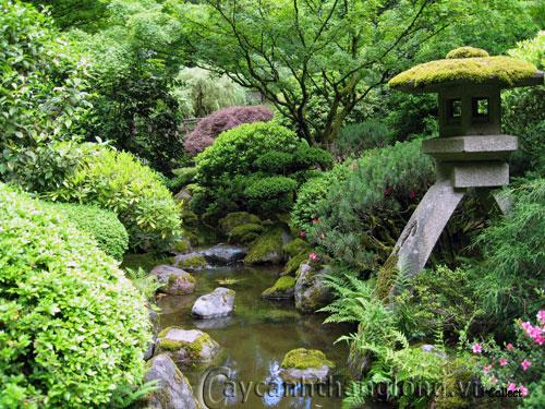 Mẫu vườn Phương Đông 10
