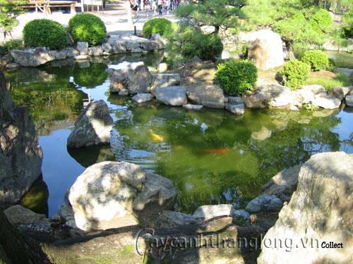 Mẫu vườn Phương Đông 11