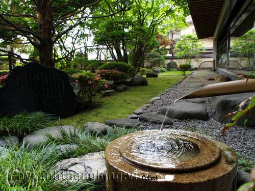 Mẫu vườn Phương Đông 15
