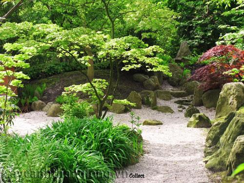 Mẫu vườn Phương Đông 17